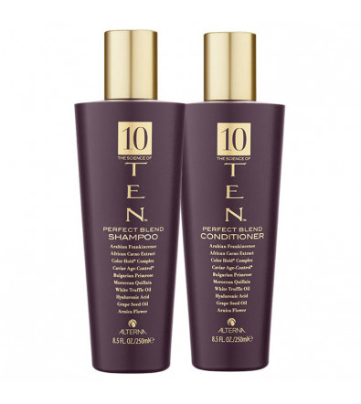 Alterna 10 The Science of Ten Perfect Blend Duo Set Набор средств по уходу за волосами 10 активных компонентов 500 мл